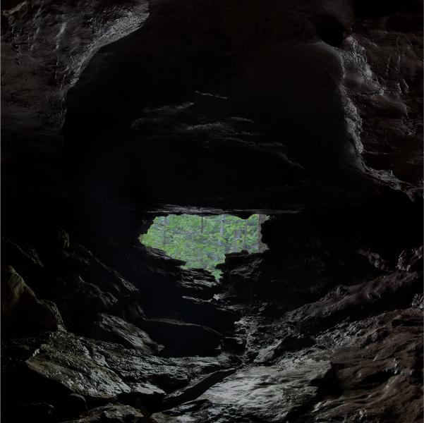 Los osos están en la cueva